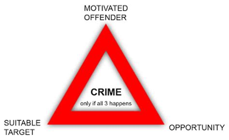 Criminal law dissertations - Optoin